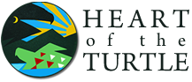 Heart of the Turtle Gallery